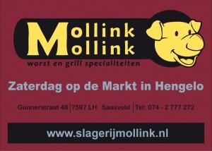 Logo Mollink kleur nieuw
